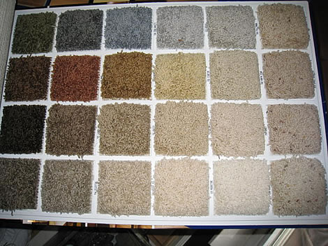 extended-color-palet-and-samples.jpg